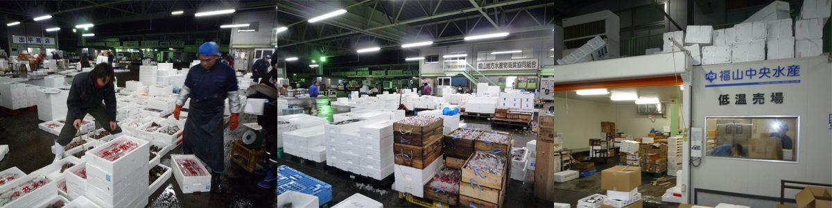 福山魚市場(水産棟・場内)